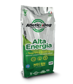 Alta Energia   Atletic Dog